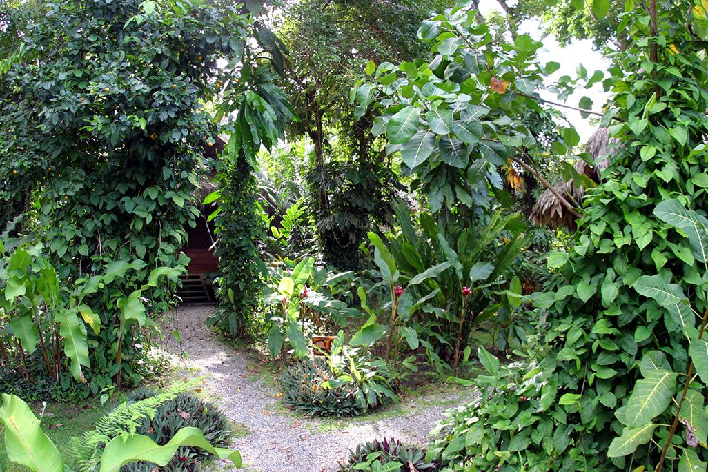 Azania Bungalows Garden