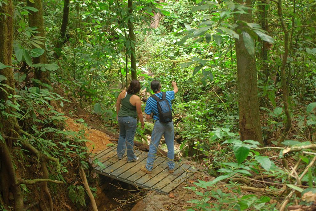 Celeste Mountain Lodge Trail