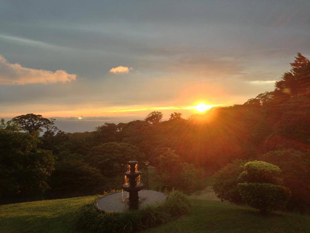 Fonda Vela Sunset