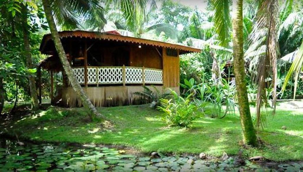 La Costa De Papito Garden
