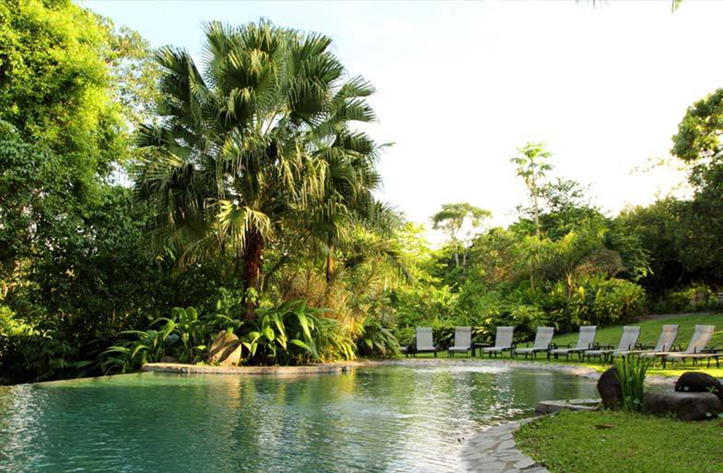 Sarapiquis Rainforest Lodge Pool