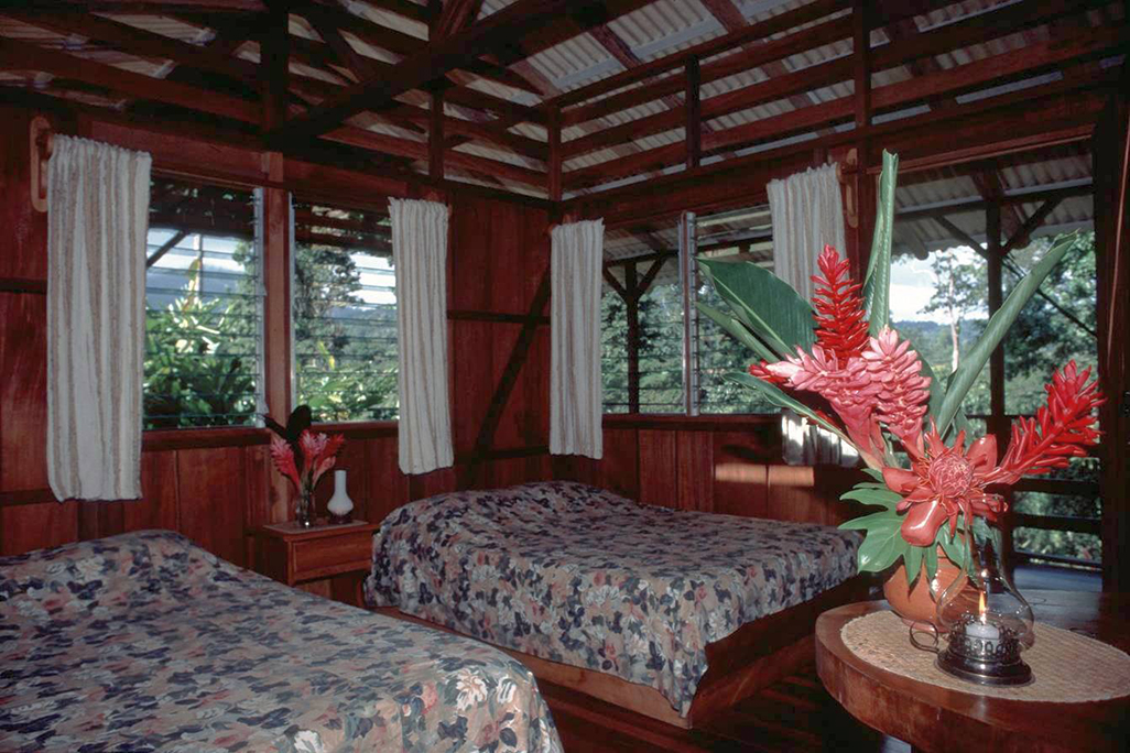 Selva Bananito Lodge Standard Room