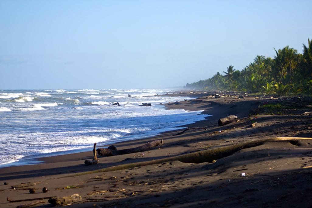Turtle Beach Beach