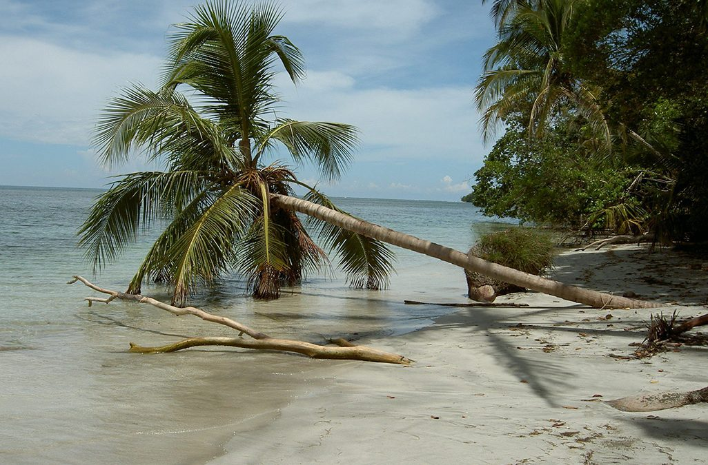 Caribbean Beach, Costa Rica